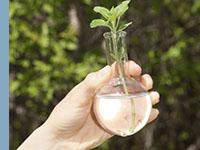 Educação Ambiental, Saúde e Qualidade de Vida